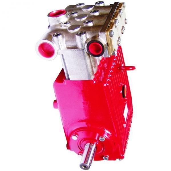 Joint D'Étanchéité Coquille Piston Pompe à la Main N 4 Elephas Cuir Hydraulique #3 image