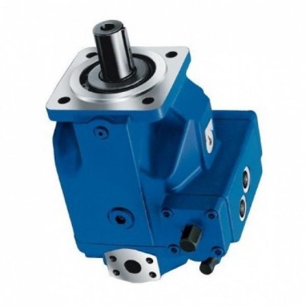 Vickers PVB29-RS-20-C-11 Hydraulic Axial Piston Pump USIP #1 image