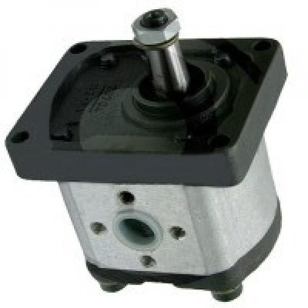 Ross W517C79 Pompe Hydraulique #1 image
