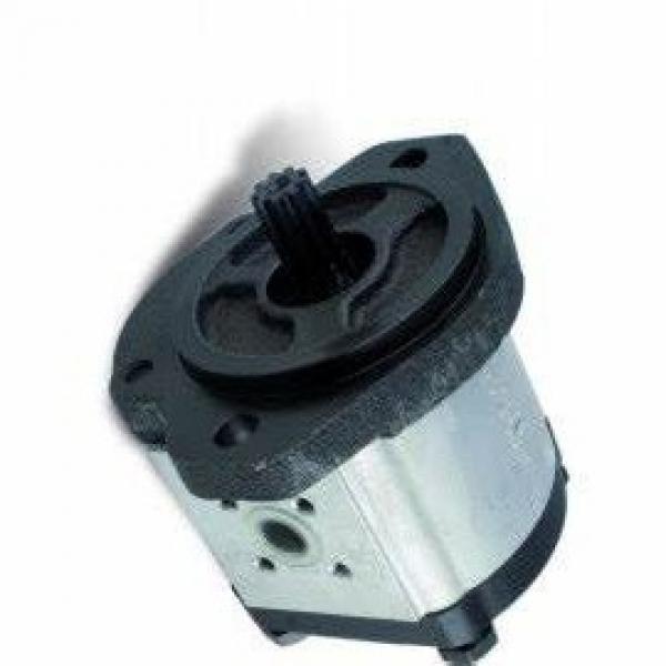 Pompe hydraulique à engrenage double corps SAUER/DANFOSS  #1 image